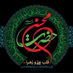 حضرت محسن علیهم السلام